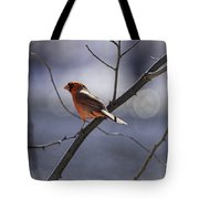 City Lights Tote Bag by Thomas Young