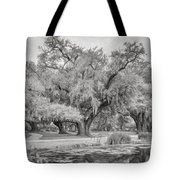 City Park Giants - Paint Bw Tote Bag