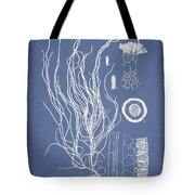 Cladosiphon Flagelliformis Tote Bag