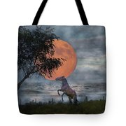 Claiming The Moon Tote Bag by Betsy Knapp