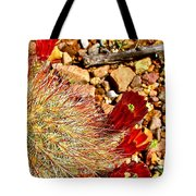 Claret Cup Cactus On Panther Junction Nature Trail In Big Bend National Park-texas Tote Bag