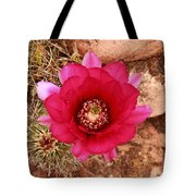 Claret Cup Cactus On Red Rock In Sedona Tote Bag