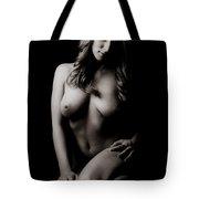 Classic Nude Tote Bag