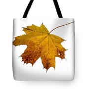Claws Of The Autumn - Featured 3 Tote Bag