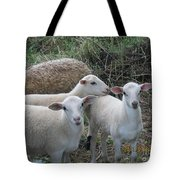 Clean Shaven Tote Bag