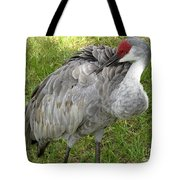 Cleaning  Feathers Tote Bag