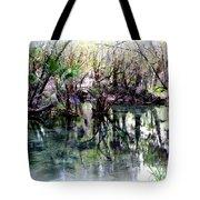 Clear Florida Springs Tote Bag