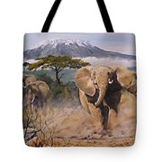 Clearing The Way Tote Bag