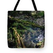 Clearwater Falls Series 17 Tote Bag