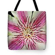 Clematis IIi Tote Bag