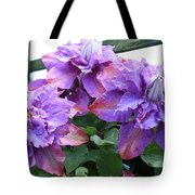 Clematis Vyvyan Pennell Tote Bag