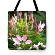 Cleome Named Cherry Queen Tote Bag