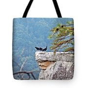 Cliff Hanging Tote Bag