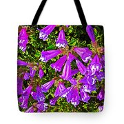 Cliff Penstemon On Watchman Overlook In Crater Lake National Park-oregon Tote Bag