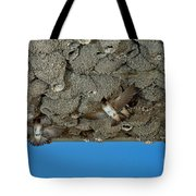Cliff Swallows At Nests Tote Bag
