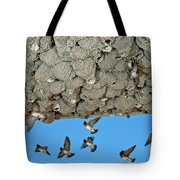 Cliff Swallows Returning To Nests Tote Bag