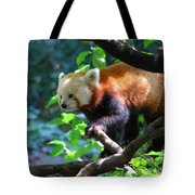 Climbing Red Panda Bear Tote Bag