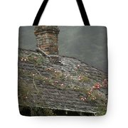 Climbing Roses Tote Bag by Ron Sanford