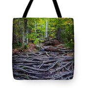 Climbing The Rocks And Roots Of Bald Mountain Tote Bag