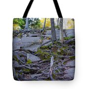 Climbing The Rocks Of Bald Mountain Tote Bag