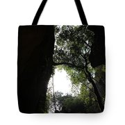 Climbing Up The Tree Tote Bag