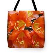 Music Please Clivia Tote Bag
