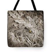 Close Crocodile  Tote Bag