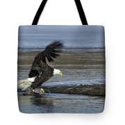 Close To Lunch Time Tote Bag