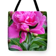Close Up Flower Blooming Tote Bag