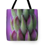 Close Up Lupin  Tote Bag