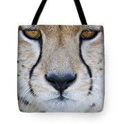 Close-up Of A Cheetah Acinonyx Jubatus Tote Bag