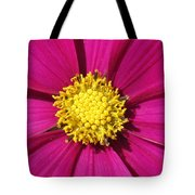 Close Up Of A Cosmos Flower Tote Bag