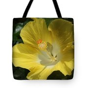 Close Up Of A Hibiscus...   # Tote Bag