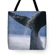 Close Up Of A Humpback Whale Fluke In Tote Bag