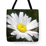 Close Up Of A Margarite Daisy Flower Tote Bag