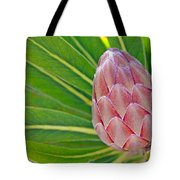 Close Up Of A Protea In Bud Tote Bag