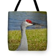 Close Up Of A Sandhill Crane Tote Bag