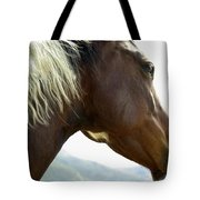 Close-up Of Brown Pinto Pony With White Tote Bag