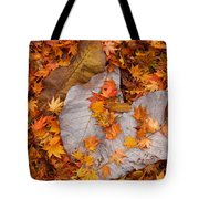 Close-up Of Fallen Maple Leaves Tote Bag