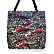 Close-up Of Fish In Water, Sockeye Tote Bag