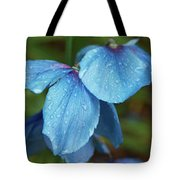 Close-up Of Himalayan Poppy Flowers Tote Bag