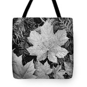 Close Up Of Leaves Tote Bag