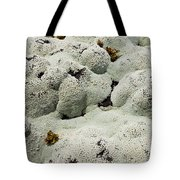 Close Up Of Lichens Commonly Called Rock Moss Tote Bag