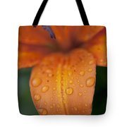 Close-up Of Orange Lily Flower After Tote Bag