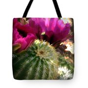 Close Up Of Pink Cactus Flowers Tote Bag