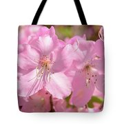 Close Up Of Pink Shell Azalea Flowers Tote Bag