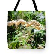 Close-up Of Prairie Grass Tote Bag