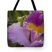 Close-up Of Purple Orchid Flowers Tote Bag