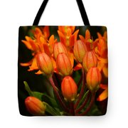 Close-up Of Wildflower Buds Tote Bag