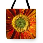Close Up Yellow Orange Mum Tote Bag